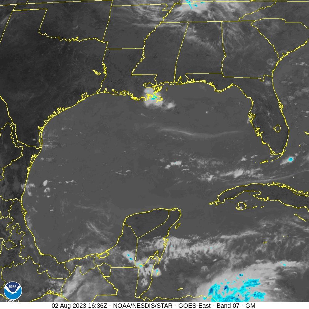 Vista del Golfo de México (infrarroja)