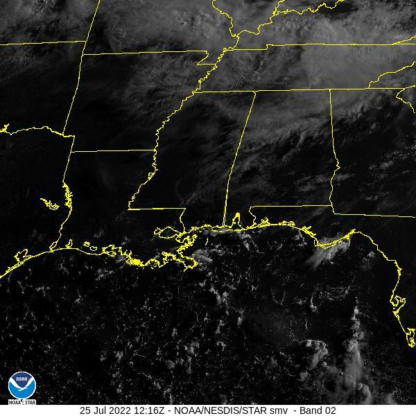 GOES-16 Southern Mississippi Valley Visible Satellite Image from STAR