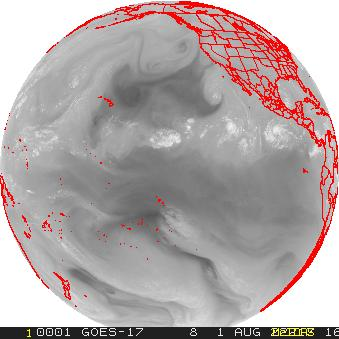 Goes West Full Disk Water Vapor